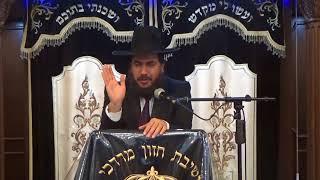 הרב אלון ארביב