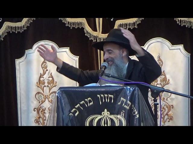 הרב מאיר דוד שמאולי - פרשת נצבים